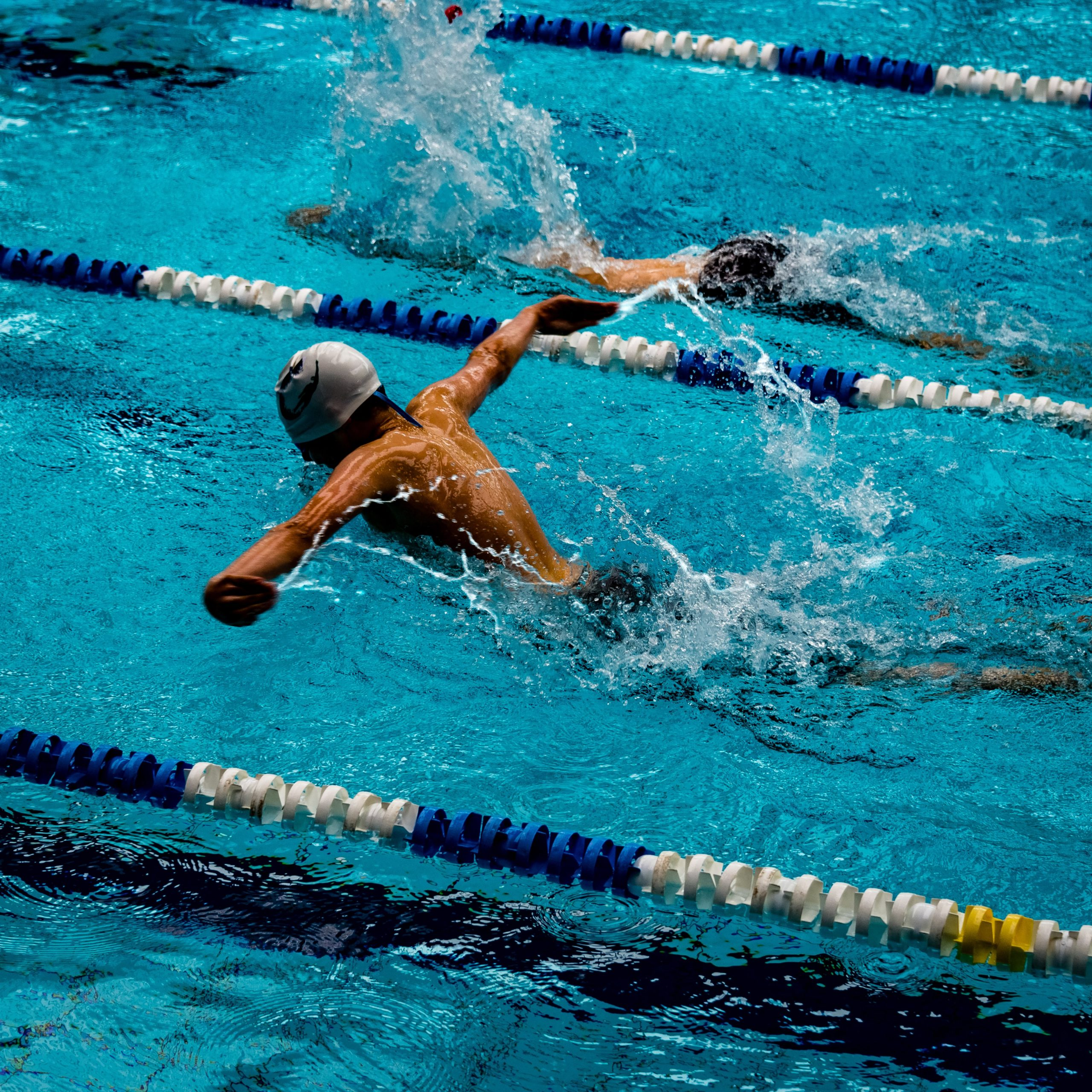 How Fins Affect The Economy And Efficiency Of Human Swimming