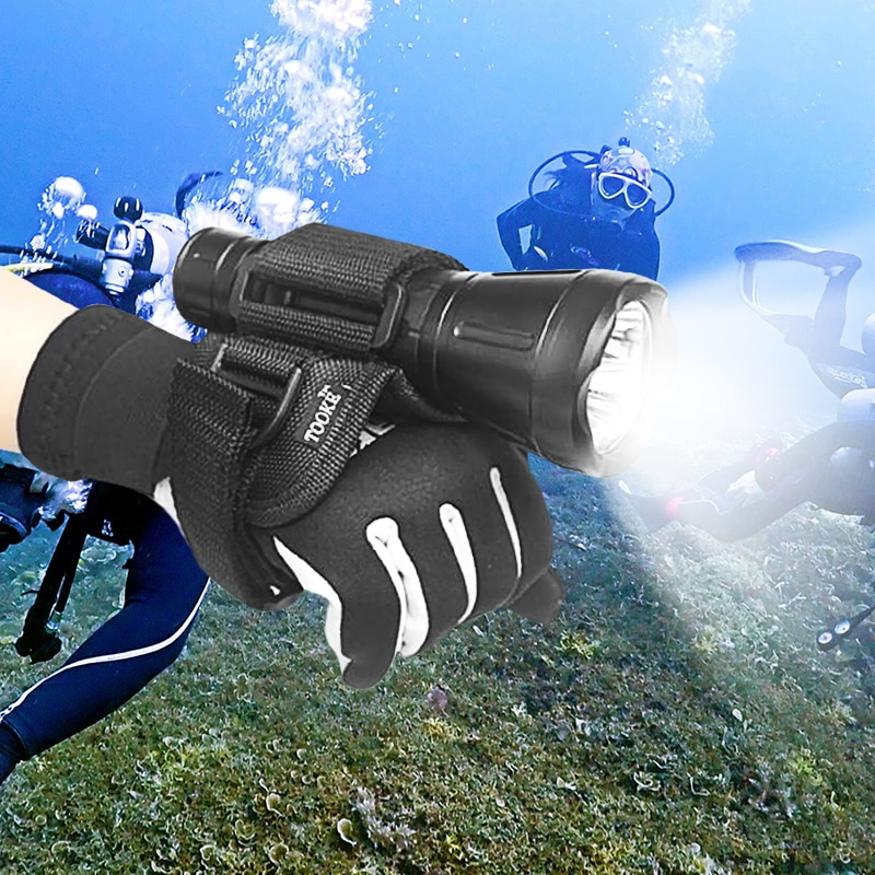 Flashlight Matters A Lot For Underwater Photography