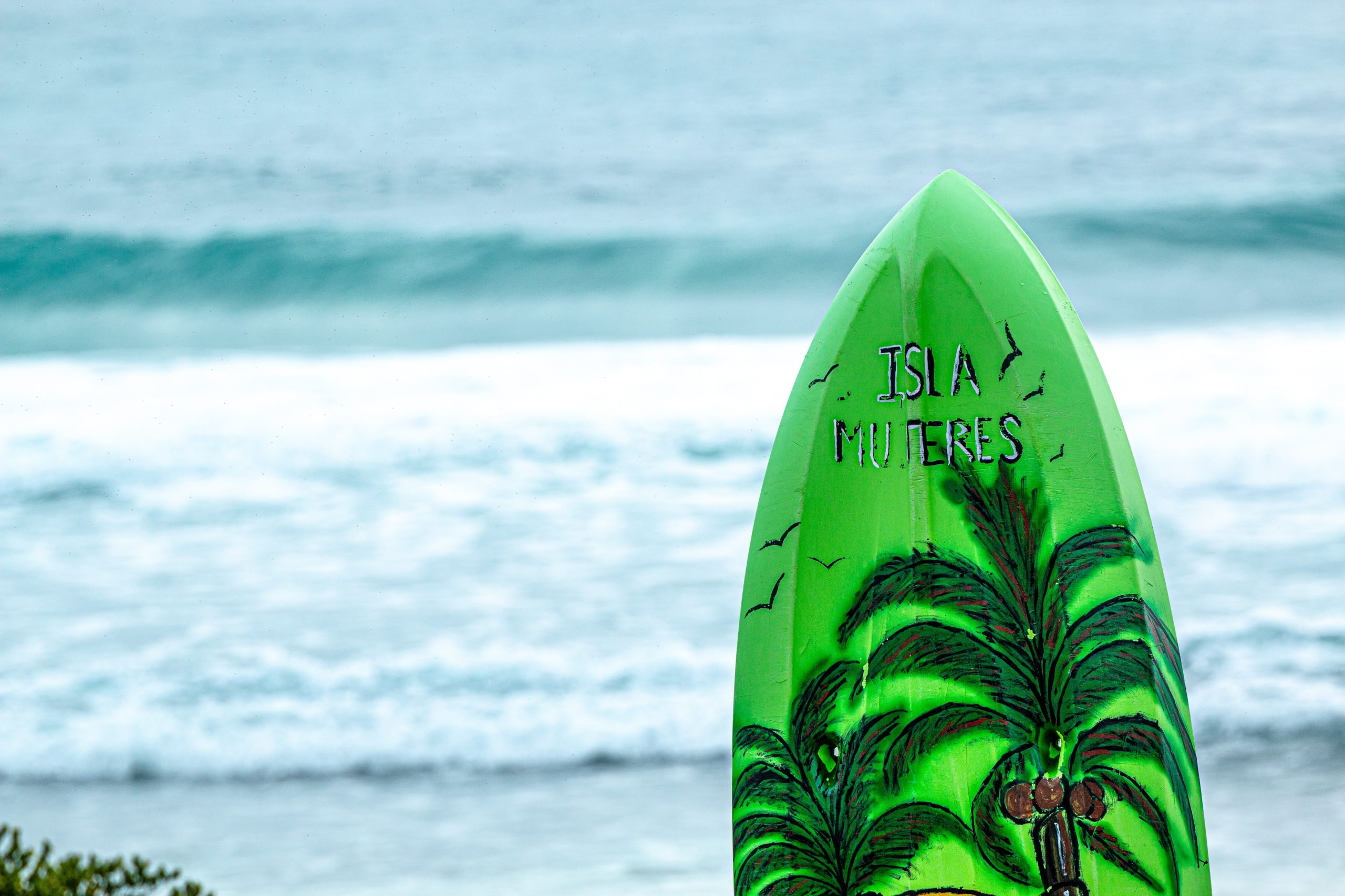 Best Surfing Equipment: Where To Buy?